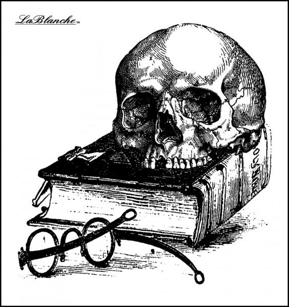 """Stempel """"Schädel auf Buch"""""""