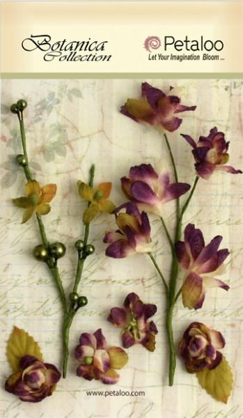 """Petaloo """"Botanical"""" Zweige-violet"""