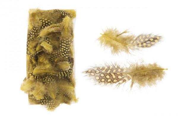 Perlhuhnfedern - gelb