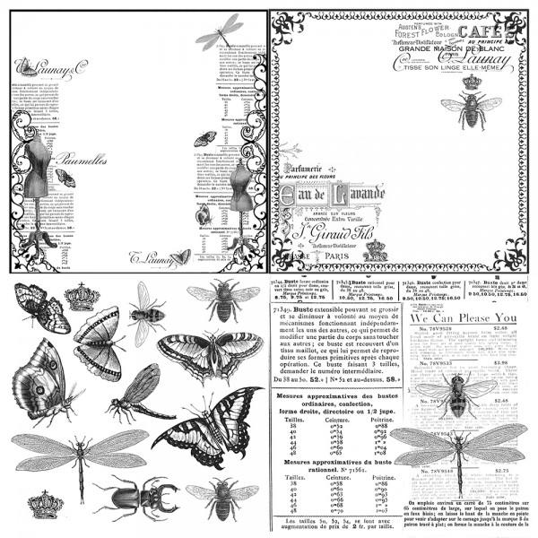 """Bedruckte Stempelfolie """"Insektencollagen"""""""