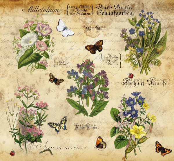 """Schrumpfbanderole """"Vintage Flowers"""" 2"""