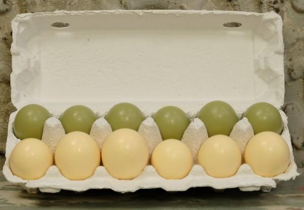 Hühnereier - Grün/Gelb (12 Stück)